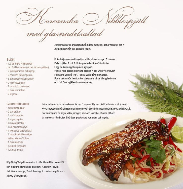 Recept Koreanska nibblespjäll Nibble