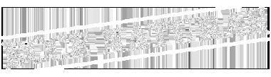 Ecce Naturae logo
